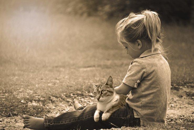 Comment apprendre aux enfants à prendre soin du chat ?